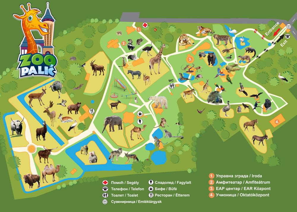 Crvenouha Kornjaca Zoo Vrt Palic
